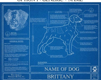 Personalized Brittany Blueprint / Brittany Art / Brittany Wall Art / Brittany Gift / Brittany Print / French Brittany Dog