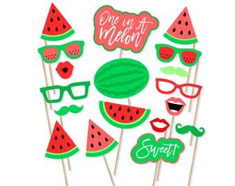 watermelon photo props