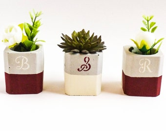 Succulent wedding - Bride and groom table decor - Mini planters - Wedding table decorations - Wedding table - Bride and groom gift