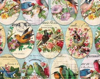 Birds & Flowers - 9 Ovals - 3,5 x 2,5 inch - Digital Oval image - Digital Collage Sheet - Instant Download