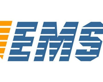 EMS Express delively service