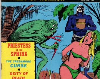 Chilling Tales of Horror Vol. 2  #4 June 1971 STANLEY Publications HORROR COMIC