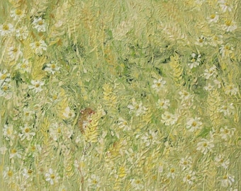 daisies, wild flowers, cornfield, field mouse