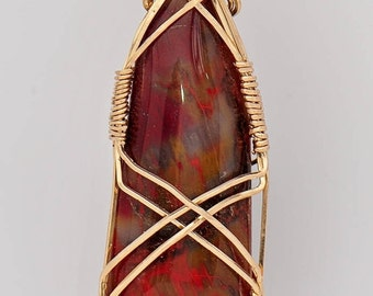 Multicolored Stunning Petrified Wood Wrapped with 14k Gold Filled Wire