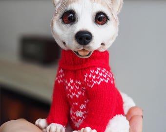 Barny the Husky dog