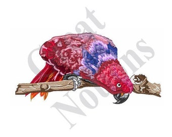 Female Eclectus Parrot - Machine Embroidery Design