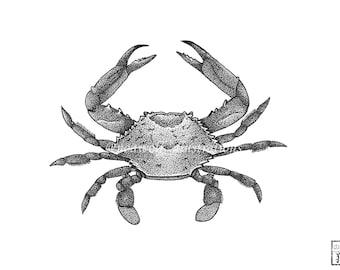Crab drawing - Crab art - Crab decor - Crab painting - Crab artwork - Crab  print - greeting card - Crab dotwork - Crab illustration