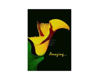 """Yellow Calla Lily """"Amazing"""" Inspirational Half-Fold Photo Greeting Card by Melsart21 Photography Creations"""