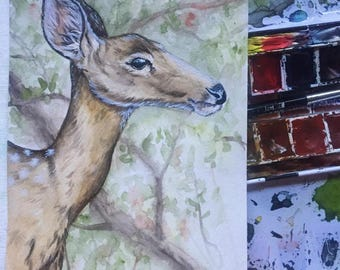 Deer watercolor