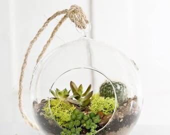 Hanging terrarium glass ball
