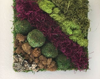 Moss Wall Art Geometric 12x12
