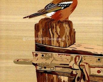 """inlaid """"tree chaffinch"""" 27cm x 32cm"""