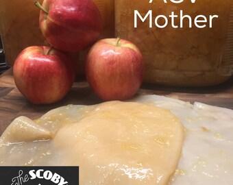Apple Cider Mother