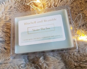 Under The Sea-3oz soy wax disney inspired scented wax melt home fragrance
