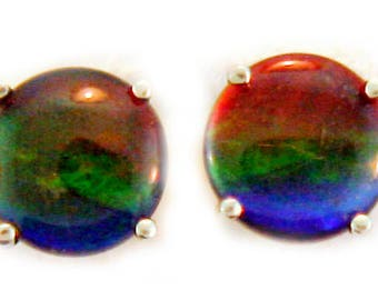Round AAA Canadian Ammolite Stud earring one Yellow 14k Gold.