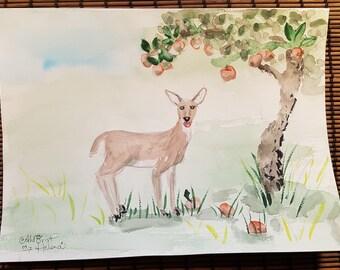 Deer in garden 1