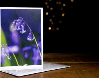 Bluebells Greetings Card