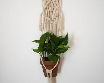 Macrame Plant Hanger in Cotton