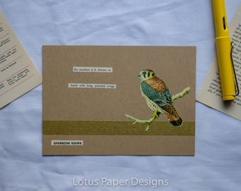 Handmade Blank Greeting Card (Flat A6) - American Kestrel - Golden Guide to BIRDS