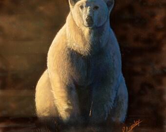 "Polar Bear - 10"" x 10"" Print"