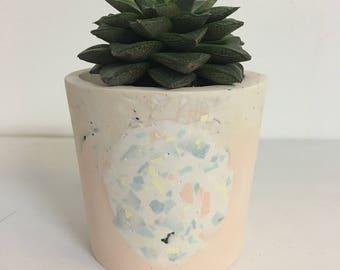 Hand cast jesmonite planter - concrete style plant pot for cacti and succulents