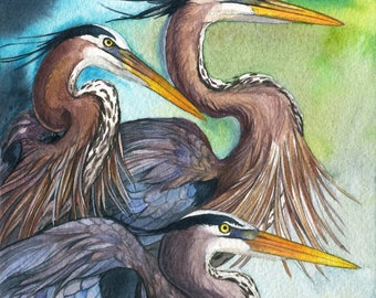 Herons - Great Blue Heron Wildlife Bird Print