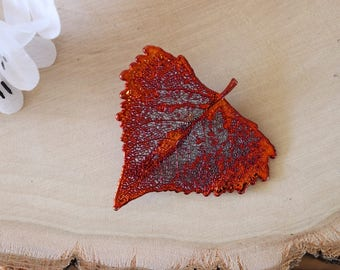 Cottonwood Leaf Brooch Copper, Hair Pin, Cottonwood Leaf Pin, Real Leaf, Copper Leaf, Nature Pin, Hat PIn, Organic Brooch, BROOCH39