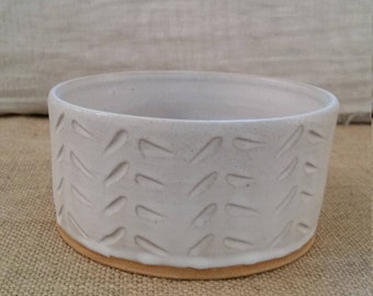 Cat or Small Dog Water or Food Bowl: Handmade Pottery, White Matte Glaze, Tan Clay Body - OOAK!