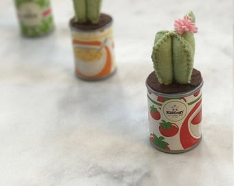 Kid Kraft Red & White Tomato Soup Tin // Green Succulent Pink Flower // Adorable Stocking Stuffer for Her Children // Christmas Hanukkah