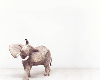 Elephant Print, Nursery Decor, Kids Room Art, Baby Animal Wall Art, Safari Nursery, Girls Room, Boys Room Art, Animal Portrait Photography