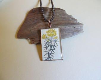 Genista linifolia, Mediterranean broom, Spanish plant, botanist gift, gardener gift, nature, vintage prints, botanical art  (NBX2010)