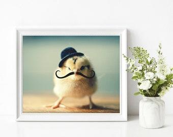 Chicken Art Photo Wearing A Derby Hat Mustache Photograph Chicks in Hats Print 8x10