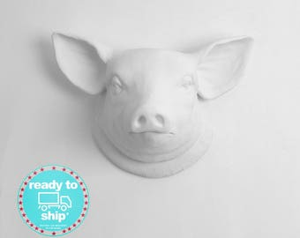 Quick Ship! Faux Taxidermy Pig Head Wall Decor. From White to Black Farm / Country Decor. By White Faux Taxidermy (Mon-Thurs*)