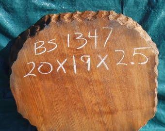 redwood burl slab - live edge table slab - wall mount -  bs1347