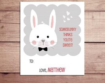 Bunny Mini Notes - Bunny Valentine's Day Cards - Bunny Lunchbox Notes - Bunny Flat Mini Notes - Children's Valentines - Teacher Valentines