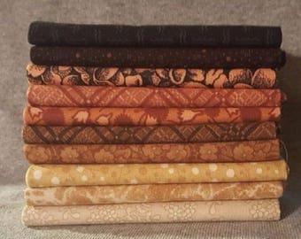 Bug Life Fat Quarter Bundle By Rjr Fabrics - 10 Pieces - 100% Cotton Quilt Fabric