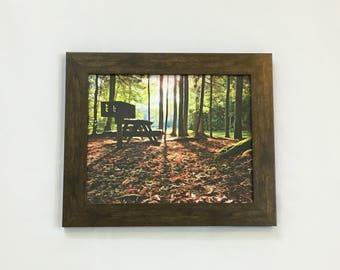 Forest Print Woods Wall Art Camping Decor Picnic Art Nature Photography 8x10 Print 11x14 Print 16x20 Print Leaves Print Nature Gift Camping