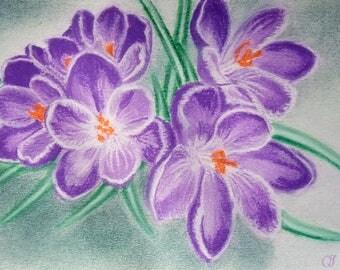 Crocus flowers pastel image original Crocuses / CROCUS / saffron