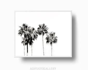 Black and White Palm Trees, Tropical Palm Tree Print, Tropical Wall Art, Californian Palm Tree Print, Modern Palm Trees Printable Download