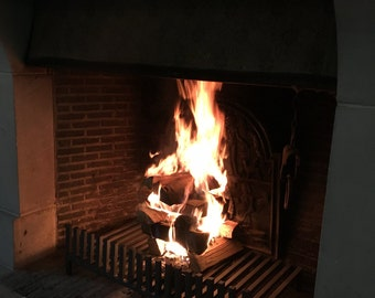 wood burning fire place grate