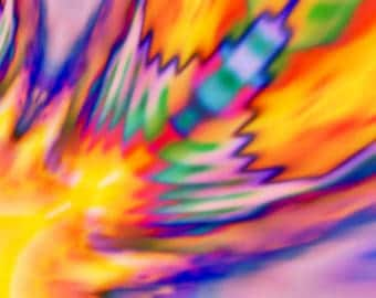 Summer Feather - Digital Art printed on canvas