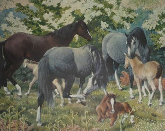Vintage Charles Frederick Tunnicliffe, Horses print