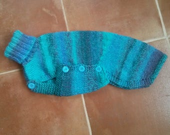 Sky blues jumper for Italian Greyhound / small whippet - Ready to post