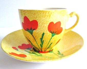 Vintage Swinnertons Staffordshire England Tea cup And Saucer
