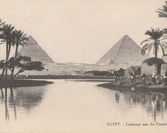 FREE POST - Old Postcard - EGYPT Landscape near Pyramids - Vintage Postcard - Unused