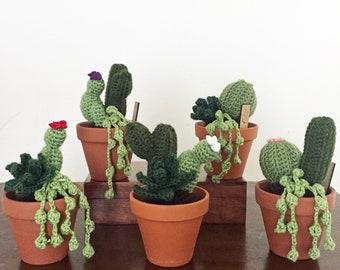 Crochet Cactus Garden / succulent garden