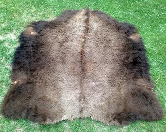Robe Quality Braintan Buffalo Hide
