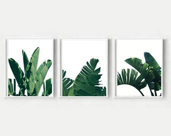 Set Of 3 Prints, Banana Leaves, Triptych, Banana Leaf Print,, Printable Wall Art, Instant Download
