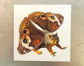 Butterfly Squirrel Card, Buckeye Butterfly Squirrel Square Blank Card
