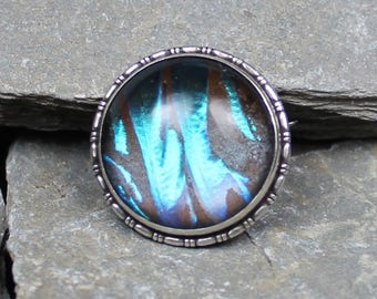 Vintage Silver Butterfly Wing brooch